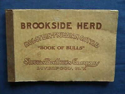Brookside Herd Holstein Friesian Cattle Book Bulls Liverpool NY Steven Bros 1915