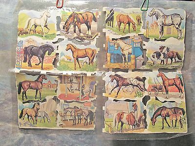 Vintage Hallmark Horse Breeds 31 Stickers - Made In England, One Missing