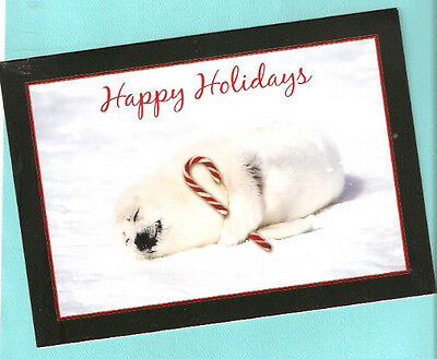 Baby Seal Candy Cane Happy Holidays Christmas Cards Box of 16 LAST ONE!