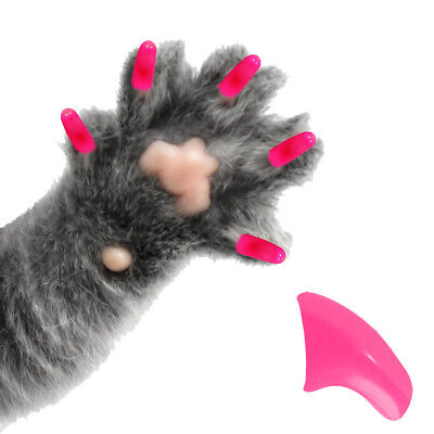 PRETTY CLAWS 60 Piece Soft Nail Caps For Cat Paws ~ Adhesive ~ BUBBLEGUM PINK