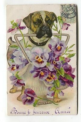 Dog offering a vase of flowers - postcard posted 1906 in France