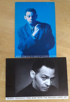 BARRY ADAMSON - Set of 2 Promo Postcards/Flyers - Mute Records 1988-1989 - RARE