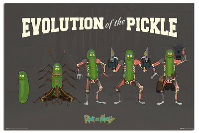 Rick And Morty Evolution Of The Pickle Poster New - Maxi Size 36 x 24 Inch