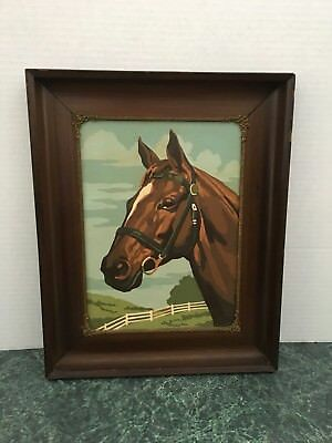 Vintage Paint By Numbers Horse Stunning