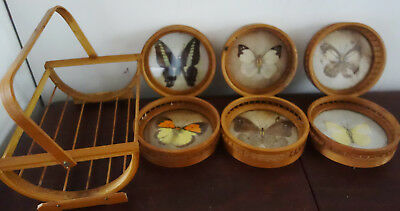 vintage bamboo butterfly wing coasters and stand