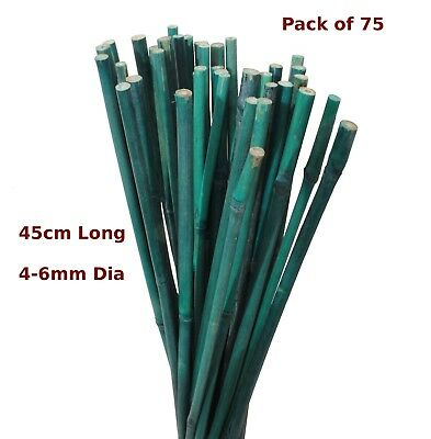 45cm Green Bamboo Canes Garden Stake Flower Spike 4-6mm Pack of 75