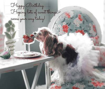 Birthday Wishes Cavalier King Charles Spaniel small blank Note Card