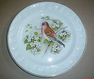 Palissy Royal Worcester Raised Linnet 9 1/4 inch Plate #2