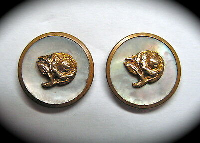 Antique Buttons ~ Pair of French Pearl Set in Brass with a Floral & Paris Mark