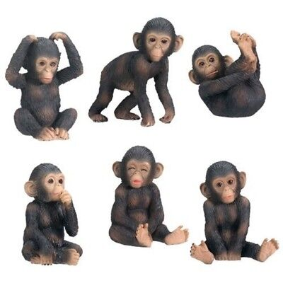 Baby Chimpanzees Posing Set of 6 Figurines Monkey Animal Wildlife Decoration New