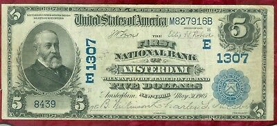 National Currency-Series of 1902 $5.00-First National Bank of Amsterdam, NY