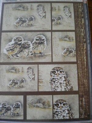 Die Cut Toppers 'Sketch Book Collection' Woodland Birds. Set 4 (114b)