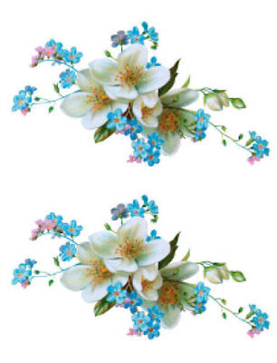 Vintage Image Shabby White Flower Blue Forget-Me-Nots Waterslide Decals FL336