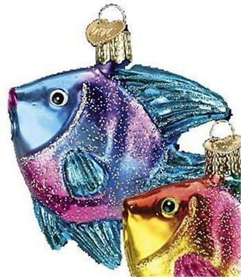 Purple & Blue Tropical Angelfish Old World Christmas Glass Fish Ornament 12383