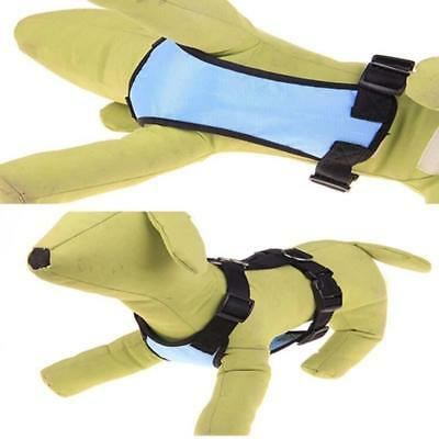 Breathable Air Mesh Puppy Dog Car Harness + Seat belt Clip Lead For Dogs Set LG