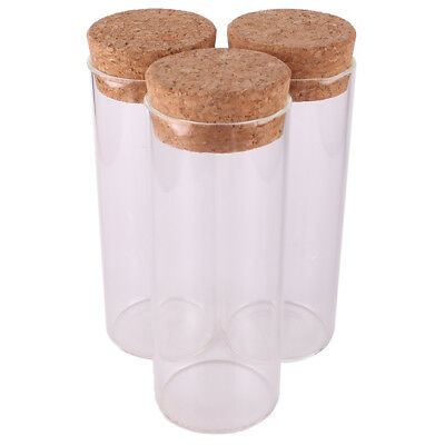 120ml Glass Storage Terrarium Bottle with Cork Stopper Lid Kitchen Candy Party