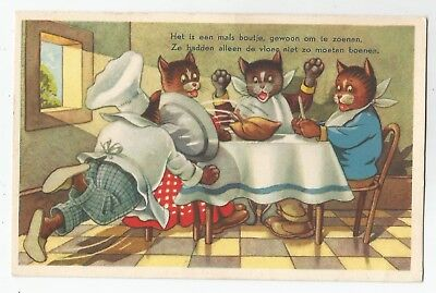 re animals cat cats kittens pets postcard animal england comic comical