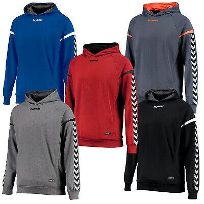 hummel Authentic Charge Polyester Kinder Hoodie Handball Volleyball langarm