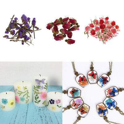 4g Natural Dried Flowers for DIY Resin Ornament Jewelry Making Candle Making