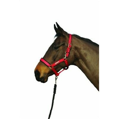 Cottage Craft Turnout Safe Headcollar - Red, Cob - Field Colours Horse Red
