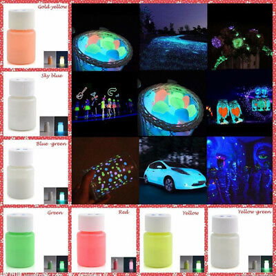 1X Glow in the Dark Luminous Paint Bright Pigment Party Car Bike Decoration DIY