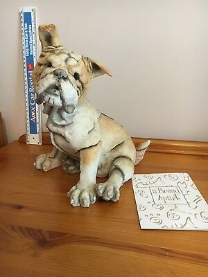 Country Artists A Breed Apart - Georgous Bulldog - 01366 - BOXED