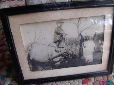 Sweet Primitive Vintage Early 1900s Framed Photo Child on Plow Horse