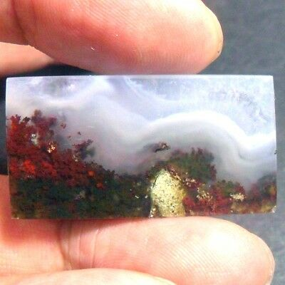 46ct AAA NATURAL Green Brown RED GARDEN MOSS AGATE ~3D Landscape PICTURE~