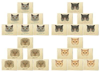 Portraits Of Cat Printed Canvas Placemats 13x19 Inch Set of 6