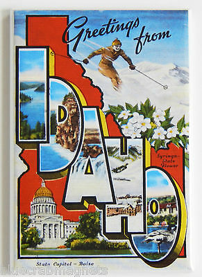 Greetings from Idaho FRIDGE MAGNET (2 x 3 inches) skiing state travel souvenir