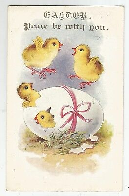 wa animals birds postcard bird animal chickens easter greetings