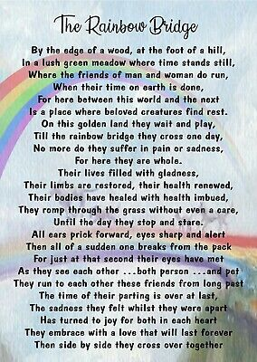 Rainbow Bridge Pet Bereavement Graveside Memorial keepsake Card Poem