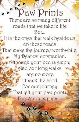 Paw prints Pet Bereavement Graveside Memorial keepsake Card Poem
