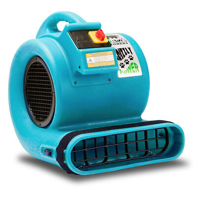 B-Air BA-GP-1-T 1 HP 3,550-Cfm 3-Speed Grizzly Multi-Cage Air Mover - Turquoise