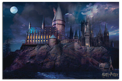 Harry Potter Hogwarts Poster New - Maxi Size 36 x 24 Inch
