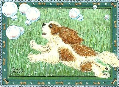 Bubble Leap Cavalier King Charles Spaniel blank note card