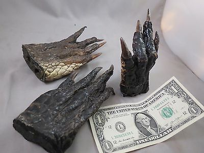 """LOT OF 3 REAL GATOR ALLIGATOR FEET TAXIDERMY claw toes 5-7"""" Genuine Authentic"""