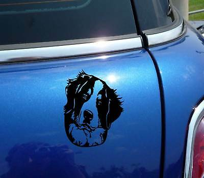 Berner Bernese Mountain Head Portrait Dog Funny Decal Sticker Car Vinyl