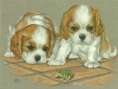 One Double Trouble, Blenhem Cavalier King Charles Spaniel Puppies note card