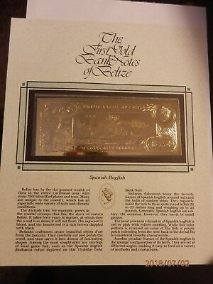 $75.00 Spanish Hogfish First Gold Bank Notes of Belize w/ Presentation Card