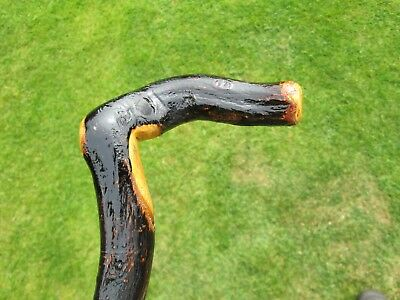 Blackthorn  Shillelagh/ Walking Stick
