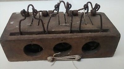 Victorian Wood Mouse Trap,attic Find,to Catch Three Mice,all Original
