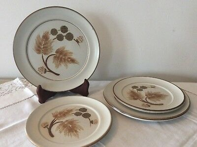 """Vintage Denby """"Cotswold"""" Pattern Plates Two Sizes Four Plates In Total Vgc"""