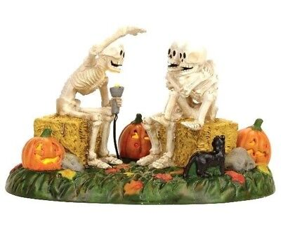 Dept 56 SV Halloween Scary Skeleton Stories #4056710 BRAND NEW Free Ship