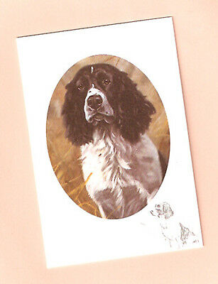 English Springer Spaniel Notecards Note Card A Grand Worker John Trickett Pack 5