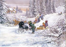 Newfoundland Don't Stop Now! Winter Sled Snow Jigsaw Puzzle 500 piece Made US D