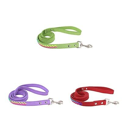 Heavy Duty Pet Dog Walking Training Leash Lead Rope for Puppy Medium Large