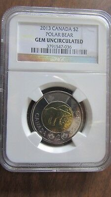 2013 CANADA TOONIE POLAR BEAR NGC GEM UNCIRCULATED unc