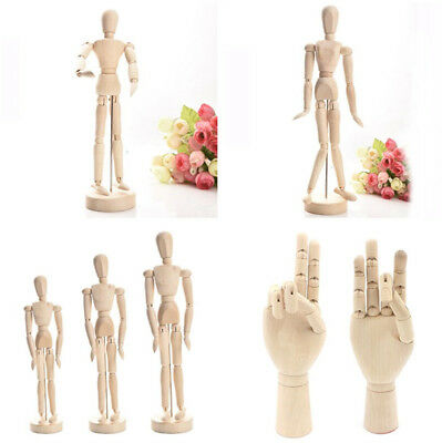 Wooden Human Figure / Hand Jointed Model Painting Body Artist Sketch Mannequin