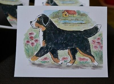 Bernese Mountain Dog .Post cards made from my original watercolor.Set of 4 .LOOK
